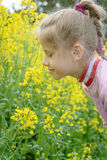 The little girl Sofia on the yellow plant Stock Photography