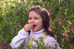 Little girl with spring flowers in nature Royalty Free Stock Image
