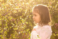 Little girl with spring flowers in nature Stock Photos