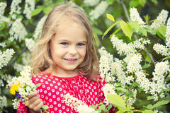 Little girl in spring flowers Stock Images