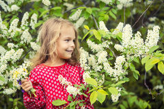 Little girl in spring flowers Stock Photo