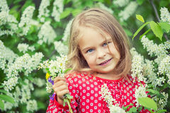Little girl in spring flowers Royalty Free Stock Photography