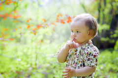 Little girl in spring forest Royalty Free Stock Photos