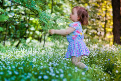 Little girl in spring forest Stock Photography