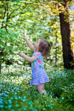 Little girl in spring forest Stock Photos