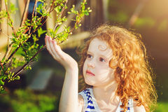 Little girl in the spring park Royalty Free Stock Image