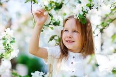 Little girl spring portrait Stock Image
