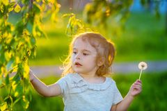 Little girl in spring sunny park Royalty Free Stock Photo