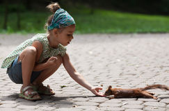 Little girl and squirrel Royalty Free Stock Photography