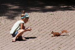 Little girl and squirrel Stock Photography