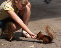 Little girl and squirrel Stock Image