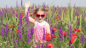 Little girl standing in colorful meadow. Little girl standing in colorful flower meadow stock video