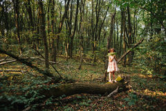Little girl standing in the forest with ferns Stock Images