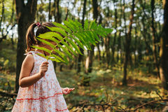 Little girl standing in the forest with ferns Royalty Free Stock Photo
