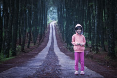 Little girl standing in the pine forest Stock Photos