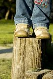 Little girl standing on stump Stock Photos