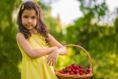Little girl with strawberries Stock Photos