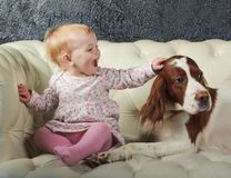 Little girl stroking big dog, on white sofa Stock Photography