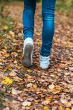 A man stops walking. The girl`s girlfriend`s. Hot girls on the nature in the park among the leaves of yellow. Autumn. The little girl stuck to the sheet. A man Stock Image