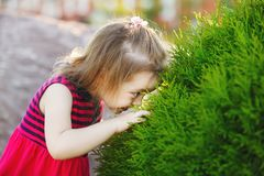 Little girl studying nature. joyful child in a good mood. stock images
