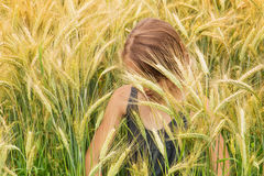 Little girl submerged under the spikes of a ripening grain field royalty free stock photography