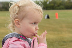 Little girl sucking her finger. Little blonde haired girl with pigtails sucking her finger Royalty Free Stock Images
