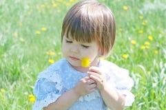 Little girl in summer with dandelion flower Stock Image