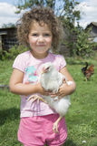 Little girl in the summer in the garden holding a chicken. Stock Images