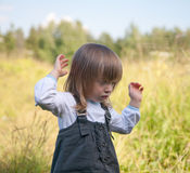 The little girl on summer meadow Stock Photos
