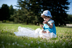 A little girl in a summer park Stock Photography