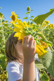 Little girl with a sunflower Royalty Free Stock Photography