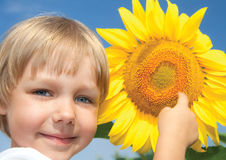 Little girl and sunflowers Stock Photo