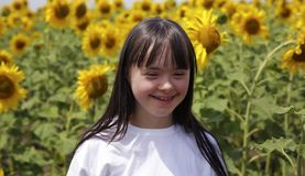 Little girl in sunflowers field stock photo