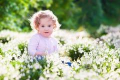 Little girl in sunny flower field Stock Image
