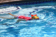 Little girl swimming in pool. Swim lesson in summer, outside pool Royalty Free Stock Photo
