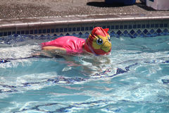 Little girl swimming in pool. Swim lesson in summer, outside pool Stock Photos