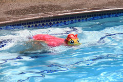 Little girl swimming in pool. Swim lesson in summer, outside pool Royalty Free Stock Photography