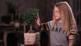 Little girl taking care of green plant stock video footage