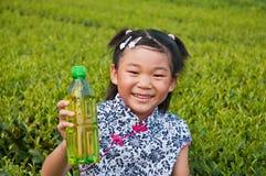 The little girl in the tea garden Stock Images