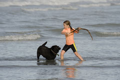Little girl throwing stick to dog in the sea. Boy (11 years) and girl (8 years) playing with black labrador dog in ocean Stock Photos