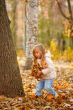 Little girl throws fallen leaves. Autumn. Stock Photography