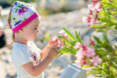 The little girl touches the flowers of the bougainvillea in Cypr Stock Photo