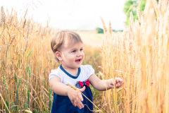 A little girl touches the hand ears of wheat in a field in summer Stock Photography