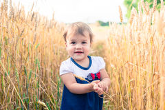 A little girl touches the hand ears of wheat in a field in summer Royalty Free Stock Photos