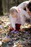 Little girl touching hepatica flowers Royalty Free Stock Images