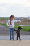 Little girl training a dog Stock Photography