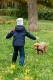 Little girl trains dogs on the street stock image