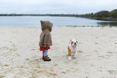 Little girl trains her puppy at the beach in autumn. A child plays with her small bulldog Royalty Free Stock Images