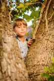 Little girl on the tree. Little girl is looking from behind the tree stock photos