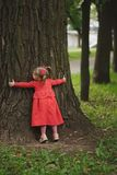 Little girl with tree in summer park stock photography